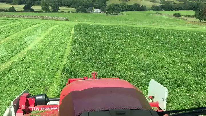 Good crops Good weather Top tunes  Happy...
