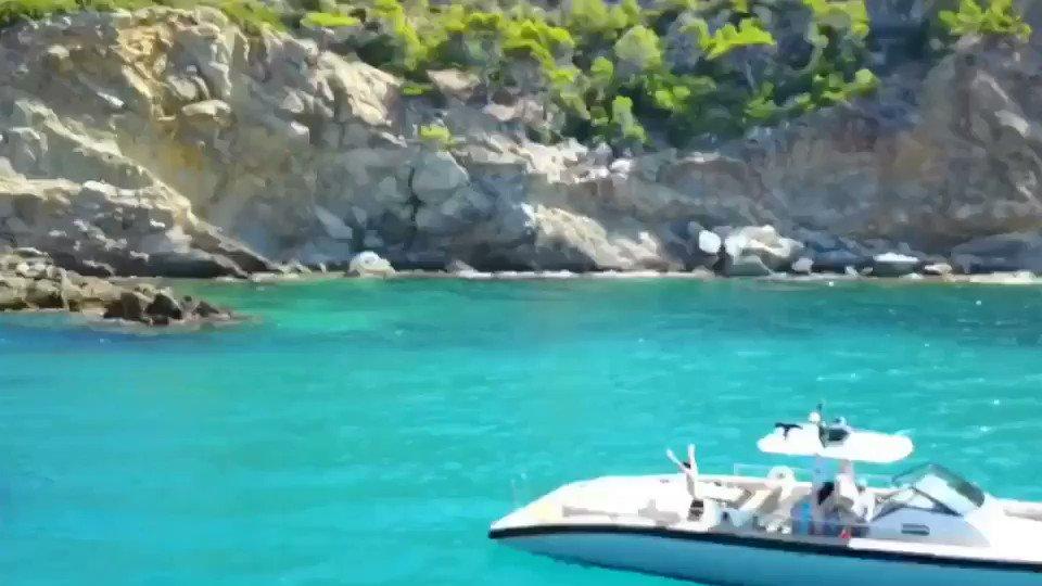 Diving into the weekend like... https://t.co/JbACsJEDQ4