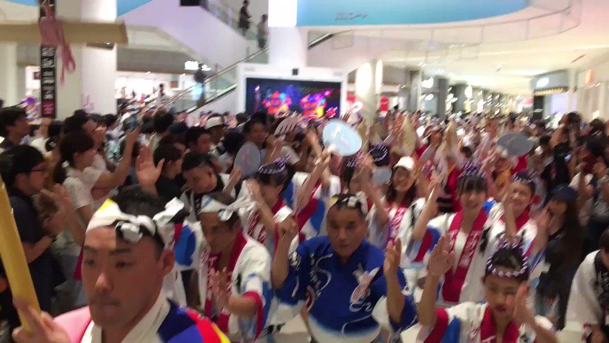 #STU48が#イオンモール徳島 で#阿波踊り 初披露です https://t.co/HryowUsGVP