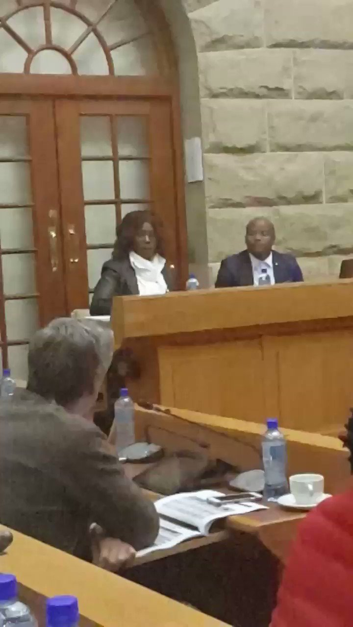 Thumbnail for Muthambi absent at Parly's Joint Committee on Ethics