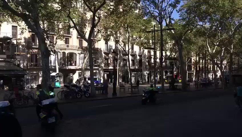 #Barcelona Se busca a individuo 1,70 prenda blanca con rayas azules. A...
