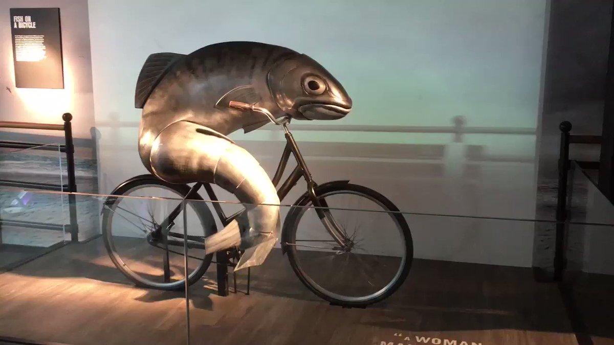 Jkw: sebutkan nama2 manusia Ikan: Budi, Adi, Dewi, Ayu, Rio Jkw: Sana ambil sepedanya Ikan: https://t.co/aJ4atYlWoo