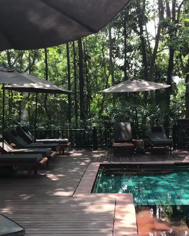 Le dimanche c'est fait pour ne rien faire ! ⛱💤 📍 Chiang Mai, Thaïlande