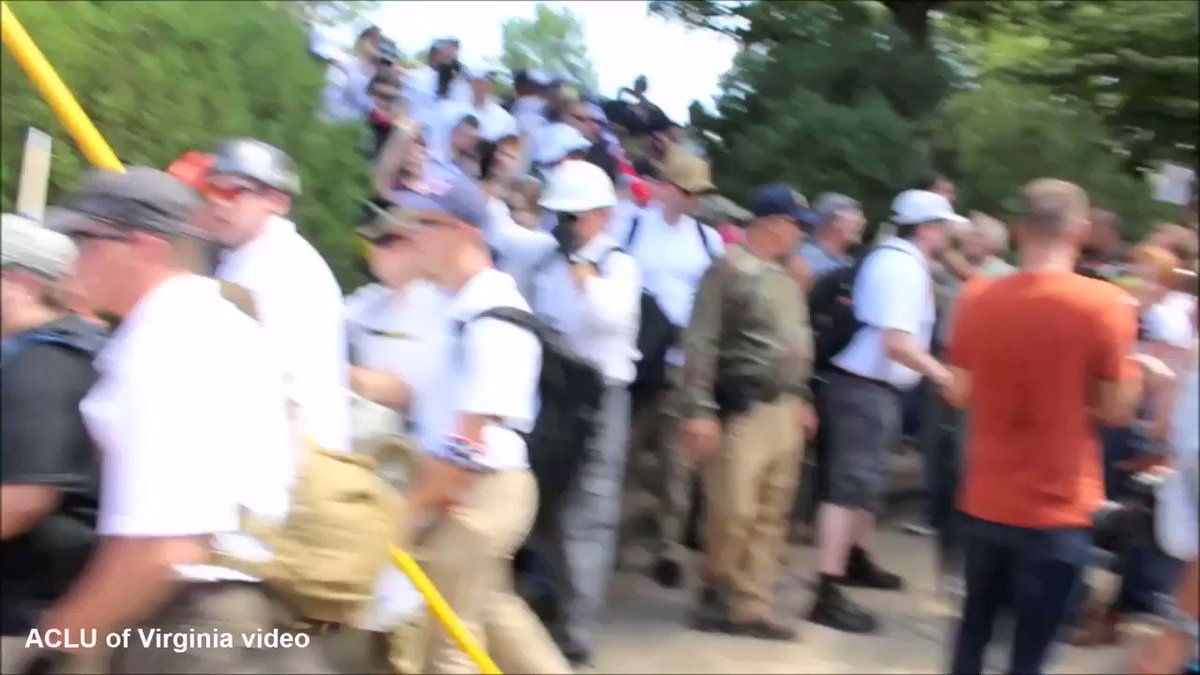 Report: Cops Told To Stand Down In Charlottesville and Coverup Followed | LIqekqJjSXumqKhU | Sleuth Journal Special Interests US News