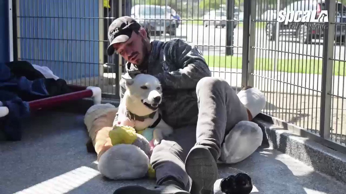 He's living in a kennel until he raises $150K for animals and disaster response @EltonCastee https://t.co/nrgeZ5P8rU