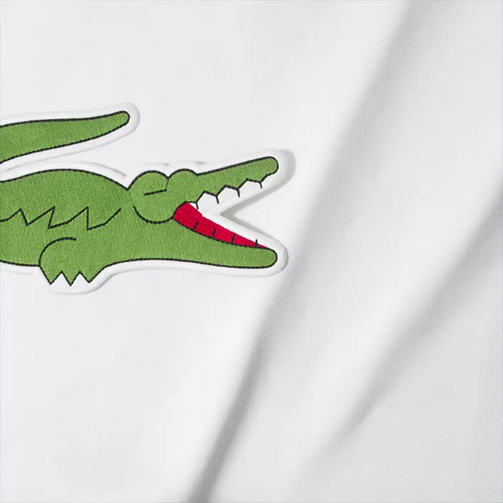 Novak Djokovic On Twitter I Love This Baby Crocodelle Thank You Lacoste For Supporting Me And Celebrating This New Life With Us