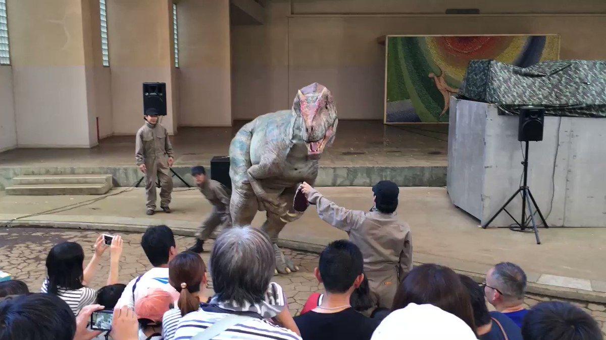 恐竜が観客を襲いはじめるのでエサで落ち着かせようとするも、牛肉だったため(恐竜は哺乳類の肉が苦手)さらに暴れ出すのでライトで落ち着かせるくだり最高だったので見て