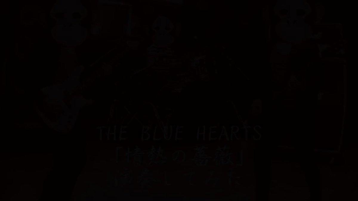 THE BLUE HEARTS「情熱の薔薇」をバンドスタイルで演奏してみた #演奏してみた#弾いてみた#叩いてみた#ブルーハーツ #ブルハ