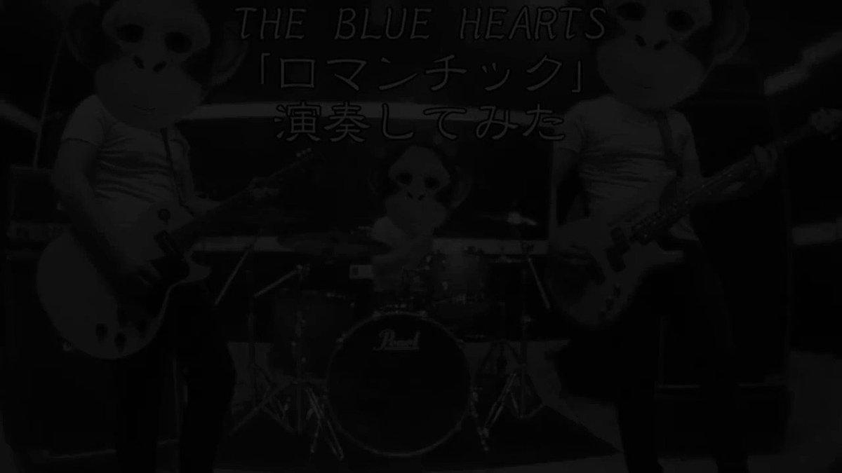 THE BLUE HEARTS「ロマンチック」をバンドスタイルで演奏してみた #演奏してみた#弾いてみた#叩いてみた#ブルーハーツ #ブルハ