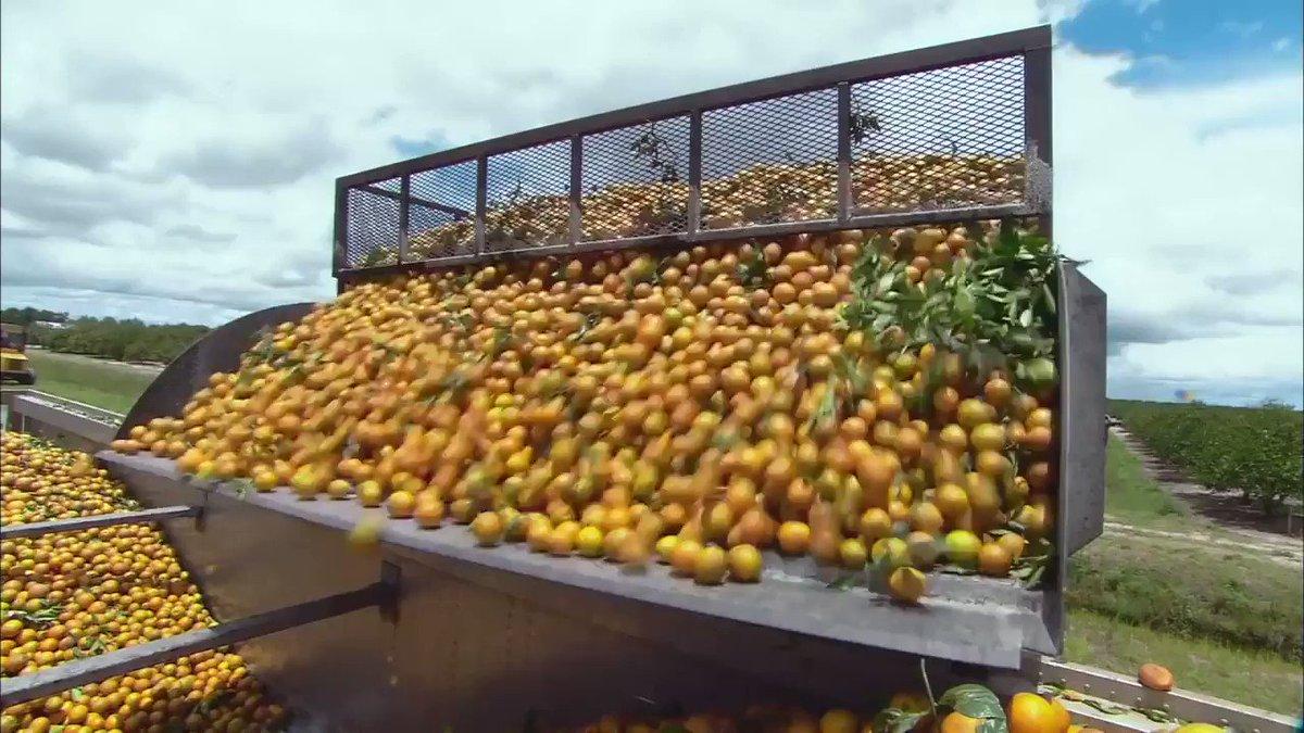 #FoodTank Latest News Trends Updates Images - FridgeSmarter