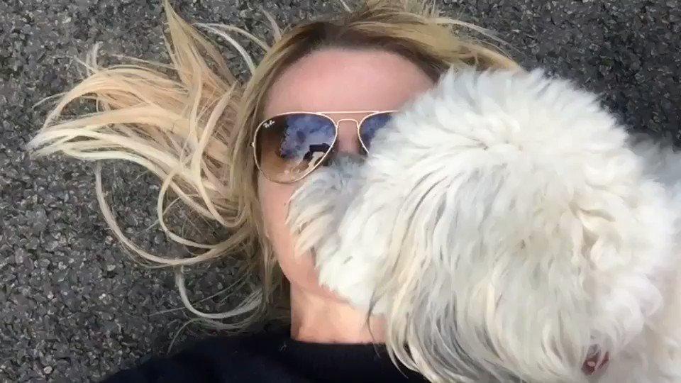#morning #licks from #buddy https://t.co/AyixWu65mk