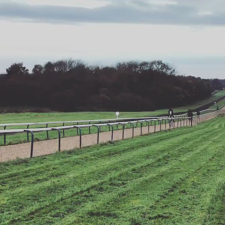 Lord Glitters having a final canter before he heads to @Ascot for the Balmoral Handicap tomorrow!