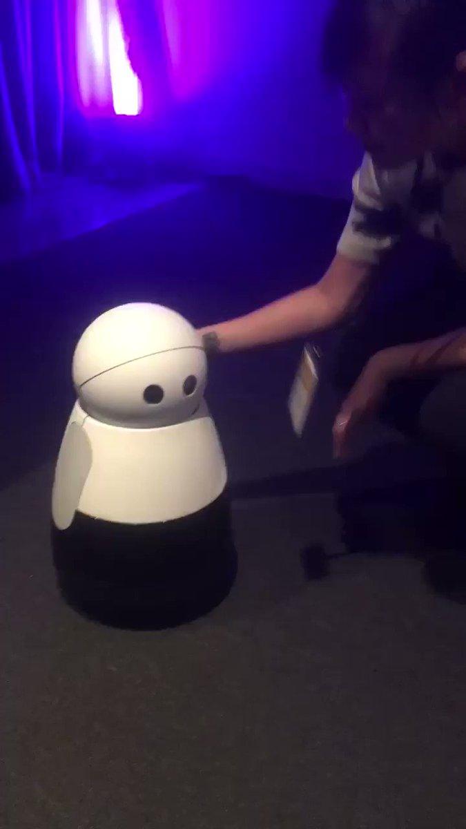 We're here at #FCFestival hanging out w/ the cutest robot @KuriRobot #heykuri???? https://t.co/1m0xmpjyvN