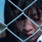 【500万回再生突破!🎉】BURNOUT SYNDROMESのメジャーデビューソング『FLY HIG…
