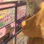 宇都宮ありがとう栃木でライブができてよかった!今日のライブのラストに話していたキャラメルです。かわい…