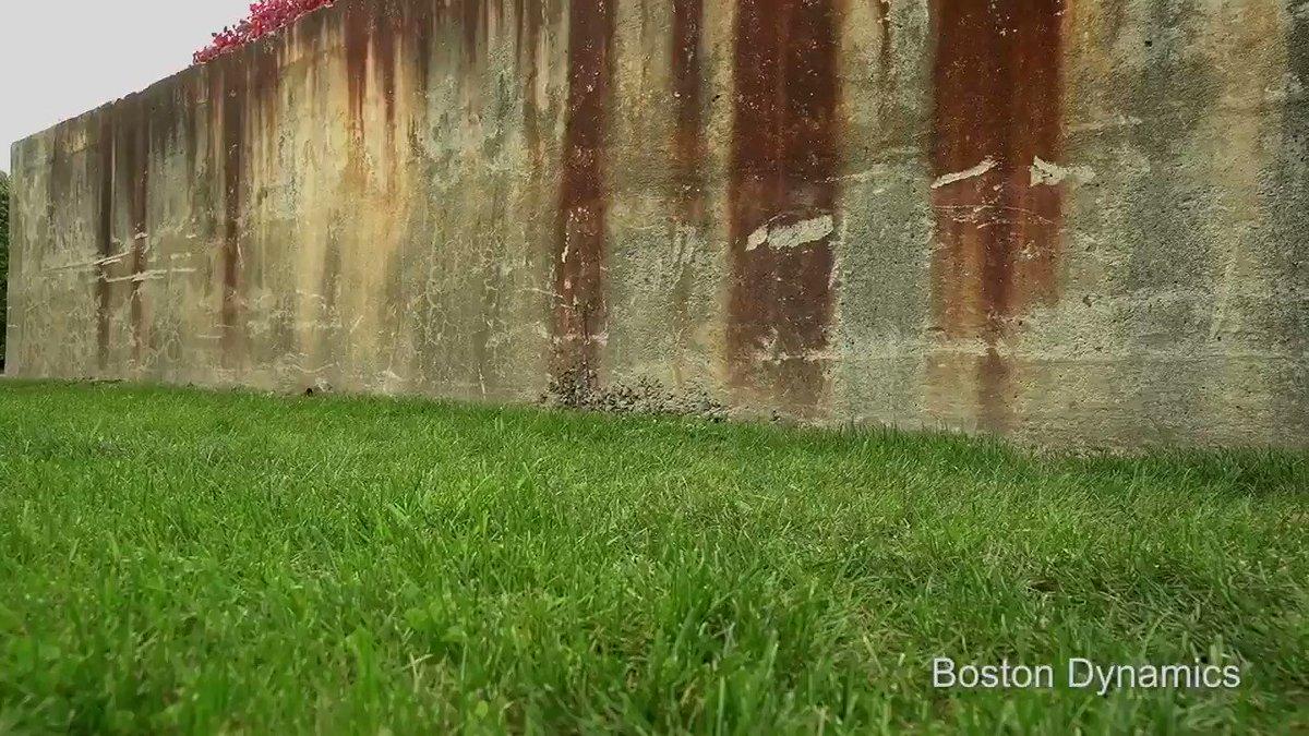きゃぁ~w Boston Dynamics の新型四脚歩行BOTキマシタワー😍