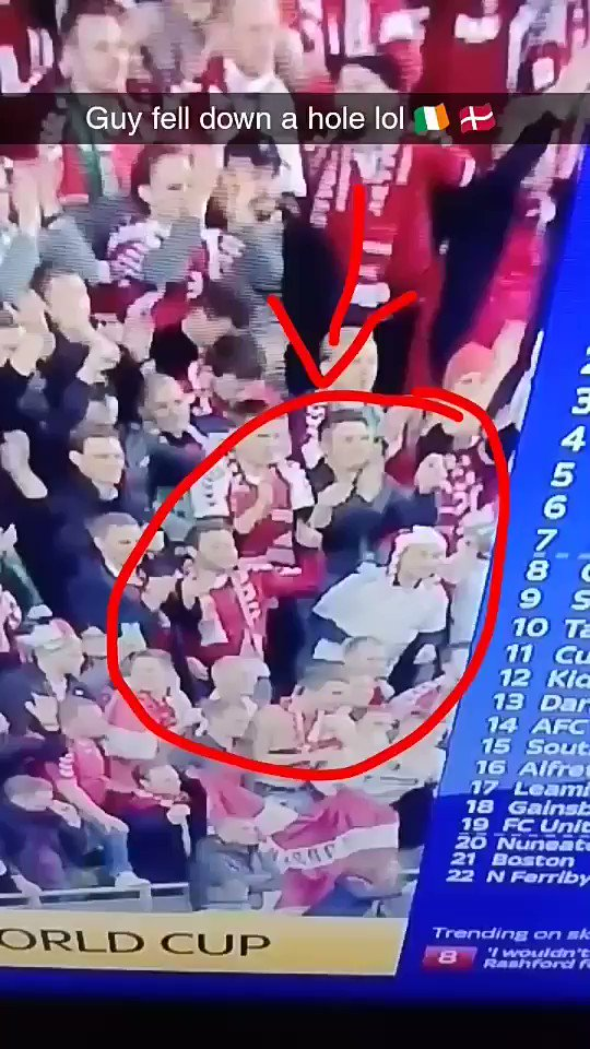 Ireland 🇮🇪 v Denmark 🇩🇰 guy falls down a...