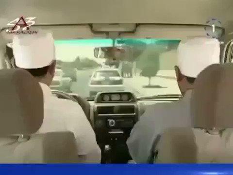 @ActionYaDawry #الهلال_اواراوا نقاش مشجع...