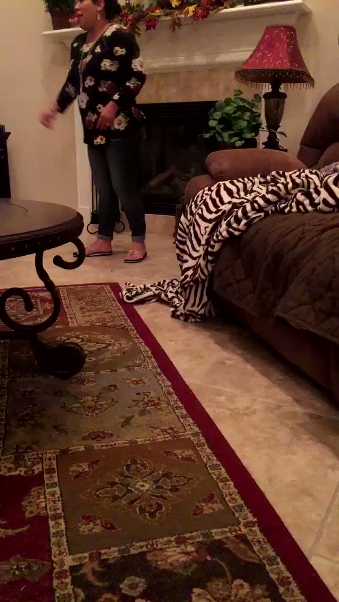 Y'all my littlest dog tries so hard to get up on the couch �� https://t.co/pv0DNuGCty