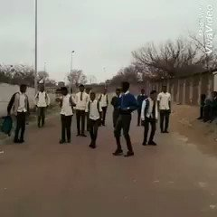 Zimbabweans going home #MugabeResigns