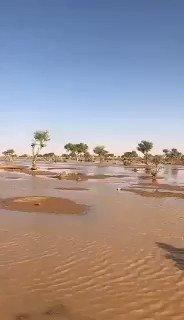 متداول : سيول شعيب الحسكي شمال شرق #حائل...