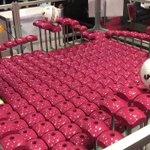 国際ロボット展、これマジ凄かった。 pic.twitter.com/3zrDBqtX95