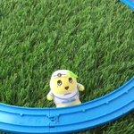 こんなっしー♪ヾ(。゜▽゜)ノ今日は朝四時からずっとふなっしートレインで遊んでるなっしー♪プラレール…