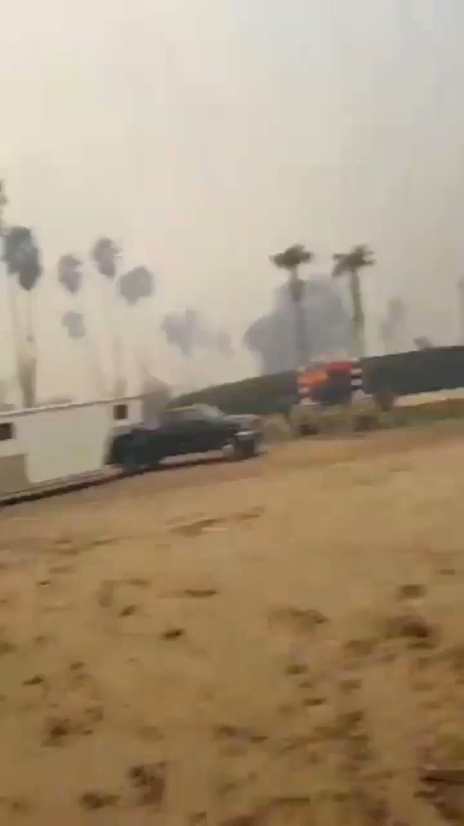 RT @horseracing4beg: If you havent seen it. Here is Leo Tapia risking his life to try to save  horses. #LilacFire https://t.co/fmDssCIgPz