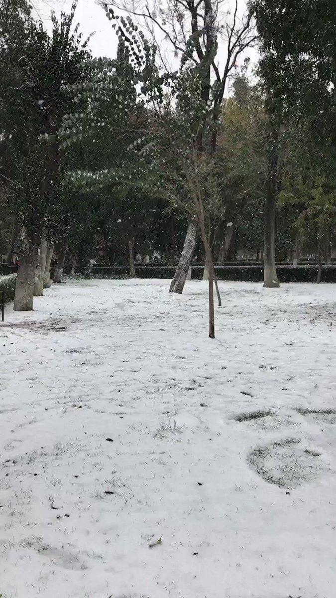 #EnEstaNavidadQuiero que vuelva a nevar...