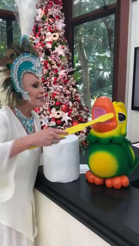 Para limpar o bico desse papagaio só com...