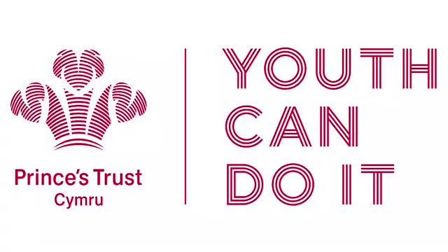Image result for princes trust cymru logo