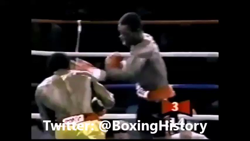 The Greatest Left Hook KOs of All Time #boxing #history #knockout https://t.co/v11jWBB8J0