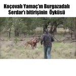 RT @VartoluSaadetti: Koçavalı Yamaç VS Burgazadalı...