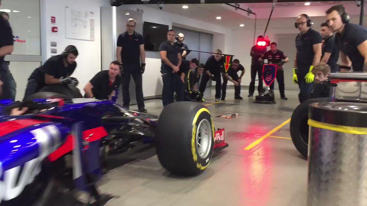 Toro Rosso's photo on Formula1