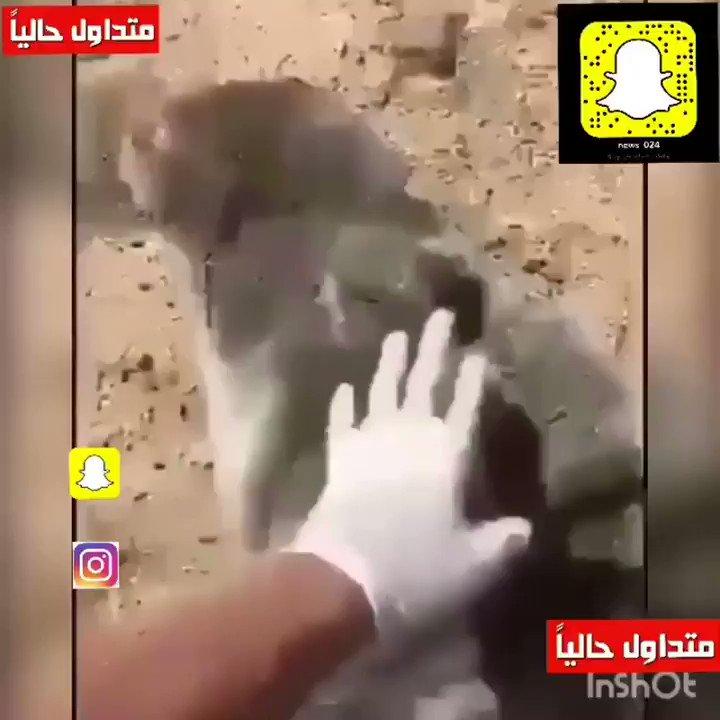 • ##السعودية | شاهد.. لفتة إنسانية من مو...