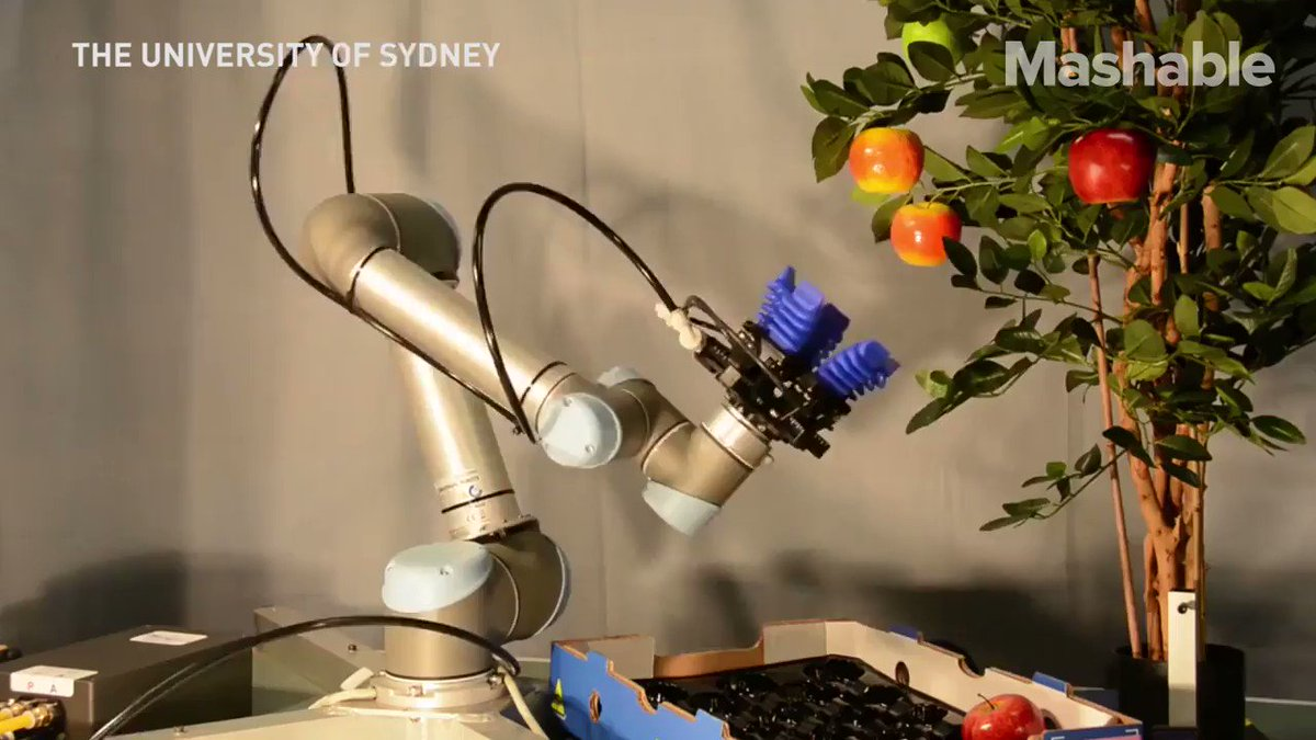Image for the Tweet beginning: Next in #agritech? #Robotics researchers