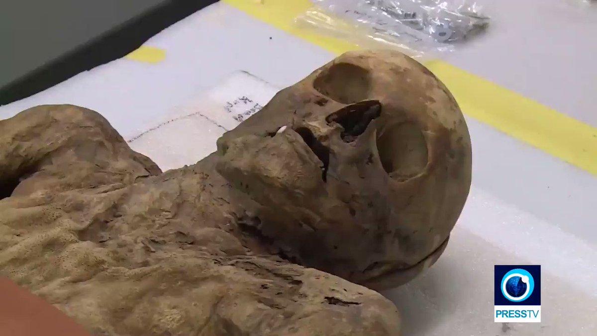 Syphilis-ridden mummy found to be Boris Johnsons ancestor ptv.io/2WrC