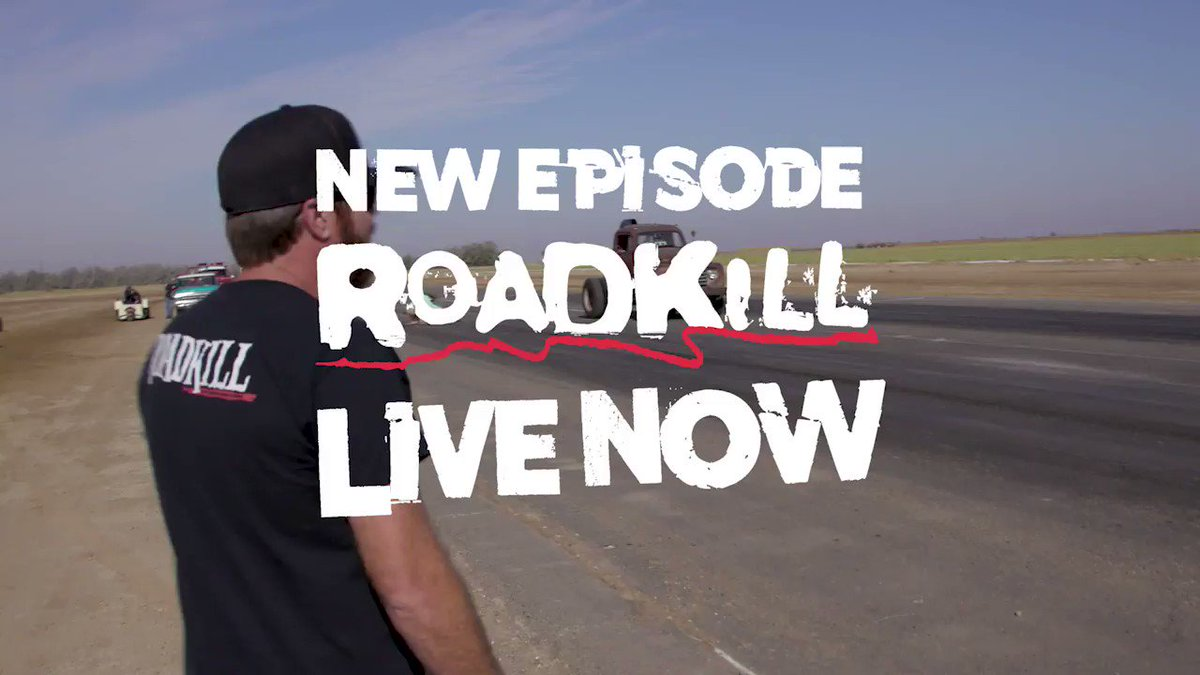 Roadkill on Twitter: