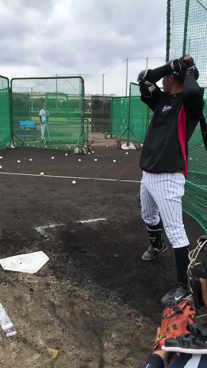 フリー打撃を行う福浦選手。(広報) #chibalotte #2018年マリーンズ春季キャンプ