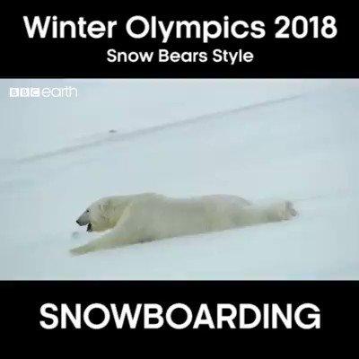 The winter olympics suck — pic 1