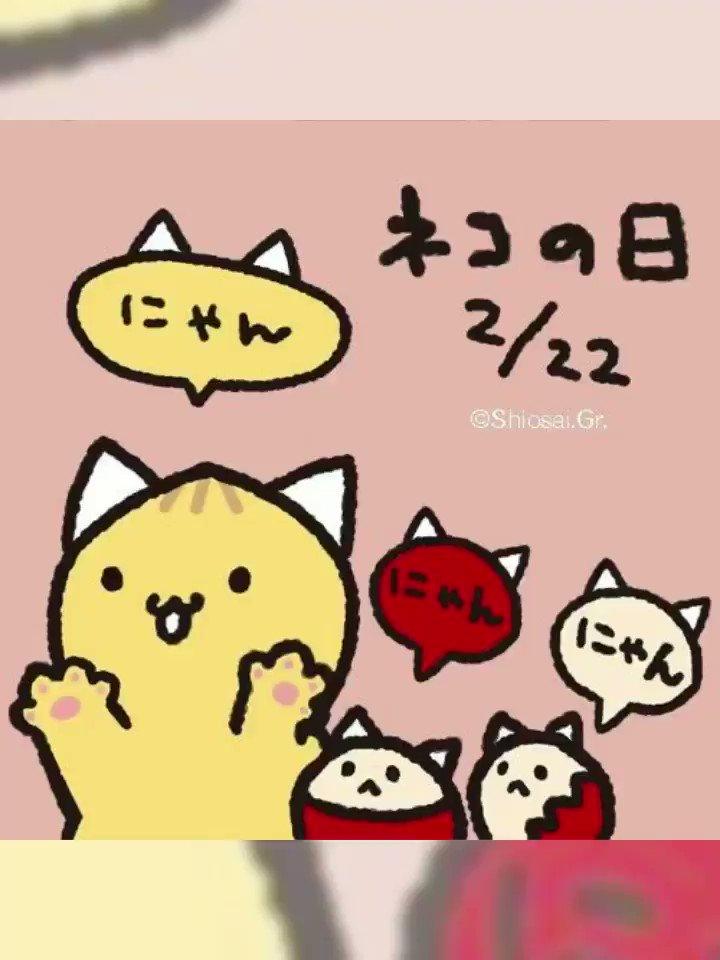 今日は、#ネコの日にゃっつーฅ*•ω•*ฅ♡にゃっつの大好きなスタッフさんちの猫ちゃんにゃっつ(=´∇`=)#猫の日 #ねこの日 #ニャンニャンニャンの日