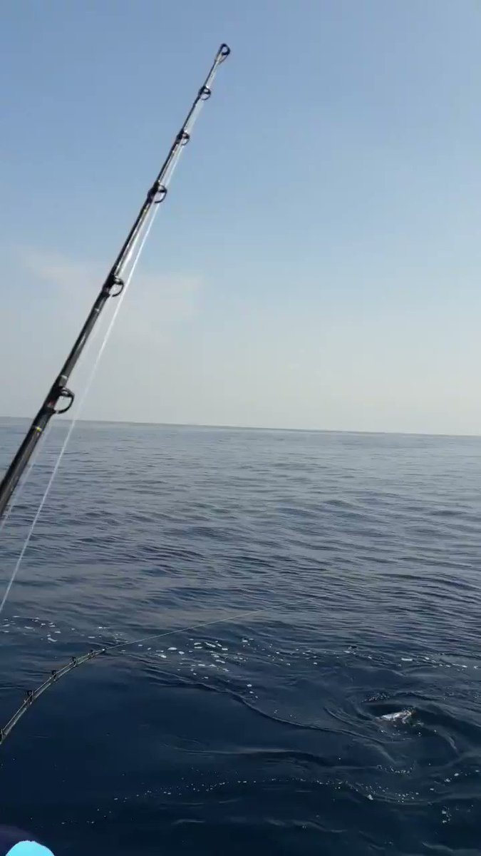 Guatemala - Typhoon released a Blue Marlin and went 10-13 on Sailfish.