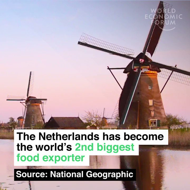 The Netherlands has become the world's second largest food exporter, while reducing water usage by 90% and nearly eradicating the use of pesticides