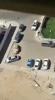 مواطن يوثق بالفيديو قيام عصابة بتهشيم زج...