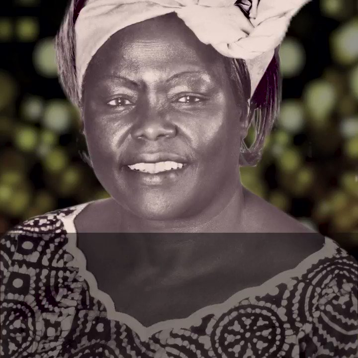 Wangari Maathai was not just an environmental activist and political campaigner who fought for democracy while leading the planting of over 50 million trees - she was also the first woman in East and Central Africa to earn a doctorate degree. #NobelPeacePrize #IWD2018