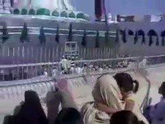 الشيخ محمد أمان الجامي رحمه الله :  لماذ...