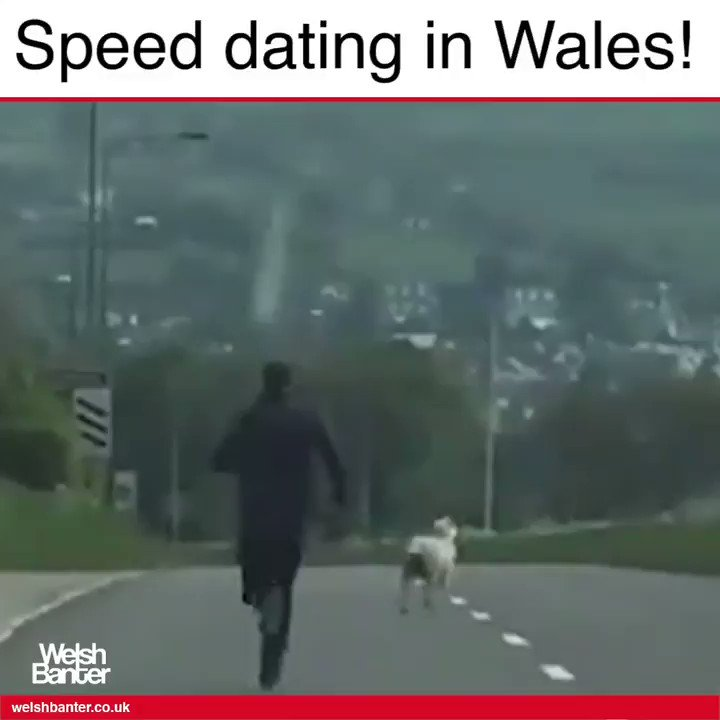 Speed dating in wales