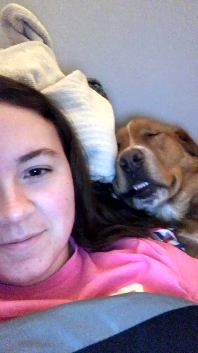 His own snoring woke him up and I cannot stop laughing https://t.co/wBV4rELESw