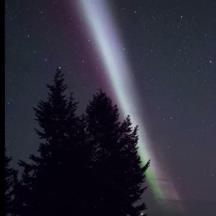 Steve the aurora can be seen as a narrow...