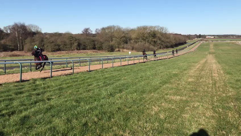 COLD STARE looking great on the @omeararacing gallops and is on course for his MPR debut, in the Group 3 Greenham Stakes at @NewburyRacing. Shares are now available and his full details can be seen here: https://t.co/wsotwltwaX